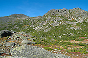 Mount Adams from the Parapet Trail, near Star Lake, in the White Mountains of New Hampshire.
