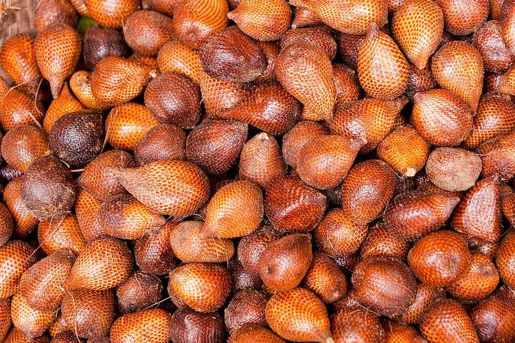 Snake fruits (salak) are a favorite on Bali.  We came across this pile in the market at Singraja, on the north coast of Bali, Indonesia.