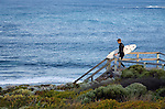 A surfer heads down to Surfer's Point - a renowned break known locally as Margaret's.  Margaret River, Western Australia, AUSTRALIA.