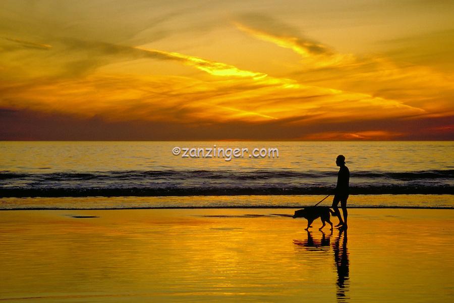 Santa Monica, CA, USA,  Beach Sunset, Man walking dog, silhouette