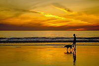 Santa Monica, CA, USA,  Beach Sunset, Man walking dog, silhouette