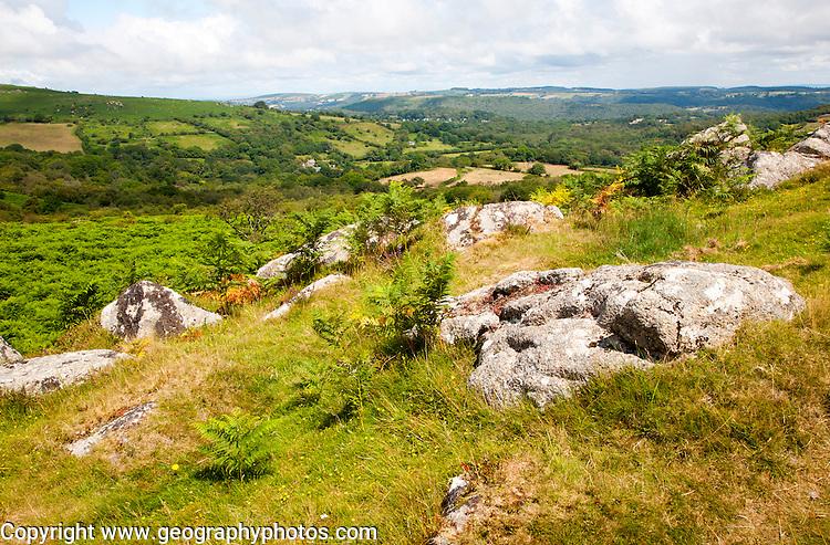 Granite upland landscape Greator Rocks tor, Dartmoor national park, Devon, England, UK