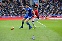 Leicester City's Harry Maguire battles with Manchester United's Jesse Lingard while a pigeon on the pitch looks on <br /> <br /> Photographer Hannah Fountain/CameraSport<br /> <br /> The Premier League - Leicester City v Manchester United - Sunday 3rd February 2019 - King Power Stadium - Leicester<br /> <br /> World Copyright © 2019 CameraSport. All rights reserved. 43 Linden Ave. Countesthorpe. Leicester. England. LE8 5PG - Tel: +44 (0) 116 277 4147 - admin@camerasport.com - www.camerasport.com