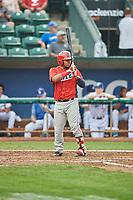Mario Sanjur (28) of the Orem Owlz bats against the Ogden Raptors at Lindquist Field on August 4, 2018 in Ogden, Utah. The Owlz defeated the Raptors 15-12. (Stephen Smith/Four Seam Images)