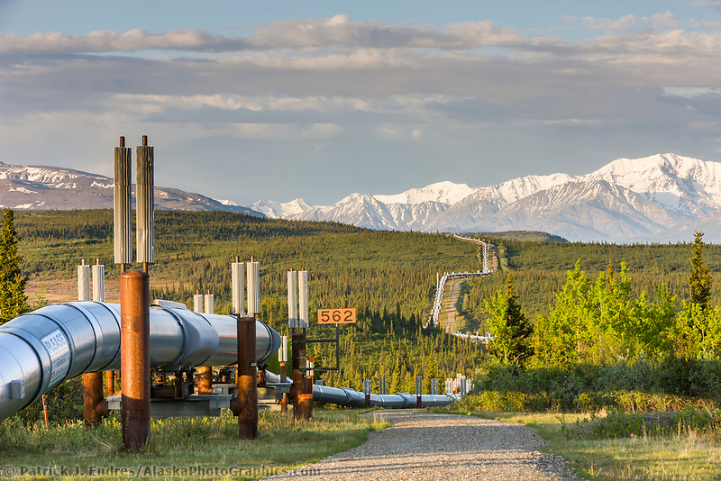 Trans Alaska oil pipeline traverses the tundra in interior Alaska, with Alaska range mountains as a backdrop