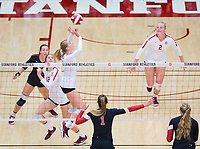 STANFORD, CA - November 4, 2018: Jenna Gray,Audriana Fitzmorris, Morgan Hentz, Kathryn Plummer at Maples Pavilion. No. 2 Stanford Cardinal defeated the Utah Utes 3-0.