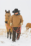 A young man works with his horses at the Magic Mountain Ranch in Three Forks, Montana.
