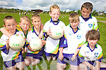 GAA SKILLS: Having fun at the VHI GAA Cu?l Campin Duagh last Friday were, l-r: Tony McElligott, Lorcan Moloney, Tom Dore, Eoin Buckley, Padraig Shanahan, Ciara?n Pierce, Shane O'Connell.