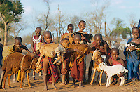 TANSANIA Handeni, Massai Kinder mit Ziegen in einem Kraal in der Maassai Steppe / TANZANIA Massai children with goat in Kraal