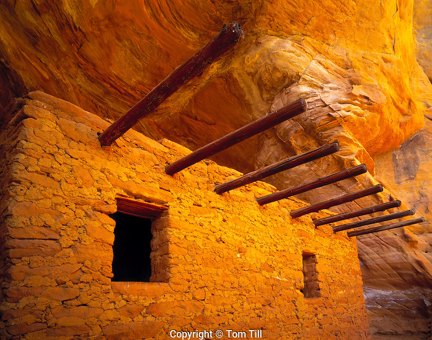 The Doll's House, Forest Service Wilderness, Utah     Dark Canyon Wilderness