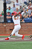 Johnson City Cardinals Todd Lott (29) swings at a pitch during a game against the Kingsport Mets at TVA Credit Union Ballpark on June 28, 2019 in Johnson City, Tennessee. The Cardinals defeated the Mets 7-4. (Tony Farlow/Four Seam Images)