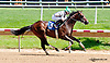 Ain't Got Time winning at Delaware Park racetrack on 6/4/14