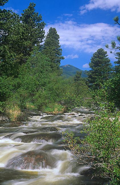 Big Thompson River, Rocky Mountain National Park, Colorado