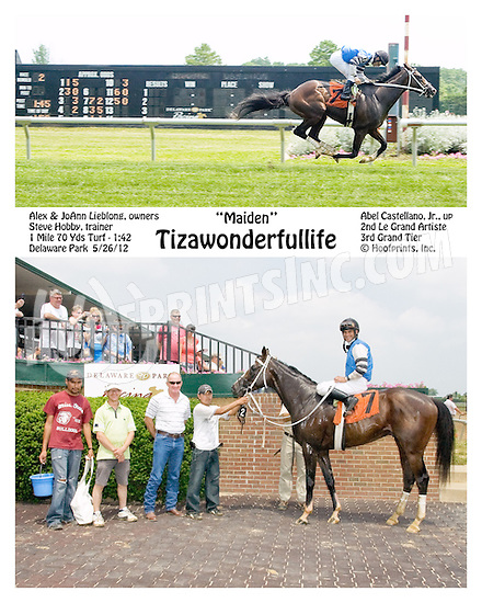 Tizawonderfullife winning at Delaware Park on 5/26/12