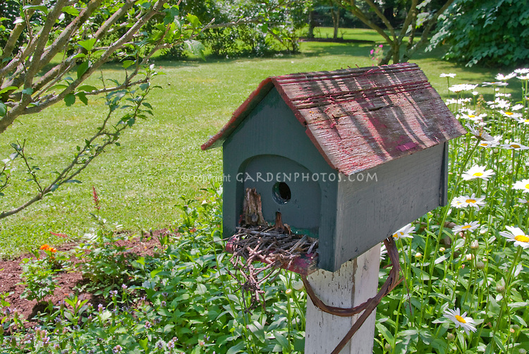 Bird house on post in garden