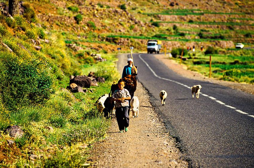 Along the route from Marrakech to Ouarzazate through the High Atlas Mountains), Morocco