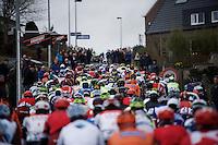peloton up the Berendries<br /> <br /> 71st Dwars door Vlaanderen (1.HC)