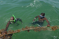 TANZANIA, Zanzibar, due to climate change and rising water temperatures seaweed farmer have shifted to plant red algae farming in deep water