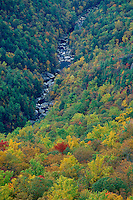 Linville River from Wisemans View<br />