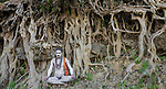 Naga Sadhu pilgrim during Kumbh Mela, Allahabad, India , banyan / strangler fig , banyan or strangler fig