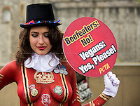 "22.04.2014 - ""Beefeaters: No! Vegans: Yes, Please!"" - PETA Demo"