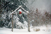 Winter scene-- Snow falling in garden highlighting the skeleton of a handmade arbor decorated with a Christmas wreath and bow