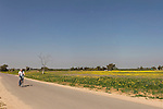 Israel, the Northern Negev. The Fields Scenic Road in Besor region