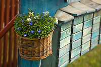 Flowers in a basket at the end of line of post boxes in Tällberg, Dalarna, Sweden