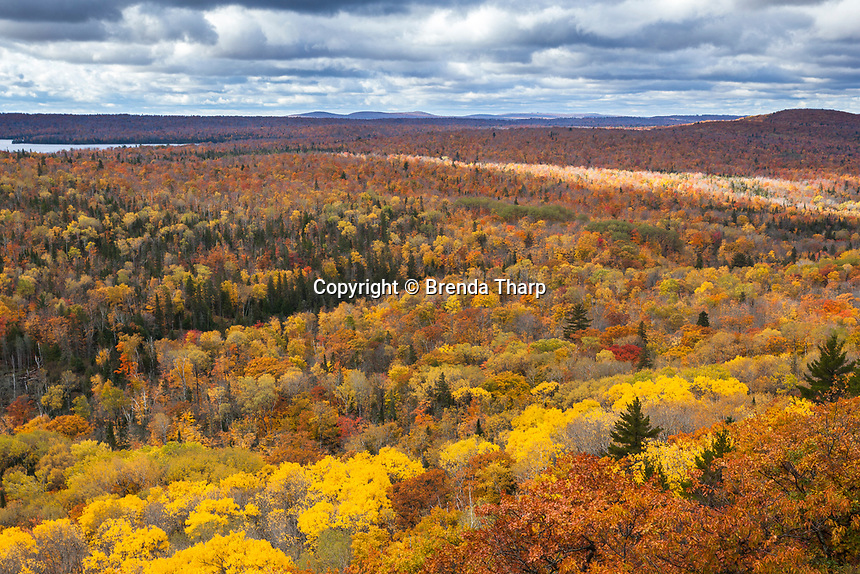 Sun and clouds create patches of sunlight and shade over the hardwood forests of the Keewenaw Peninsula, Upper Michigan.