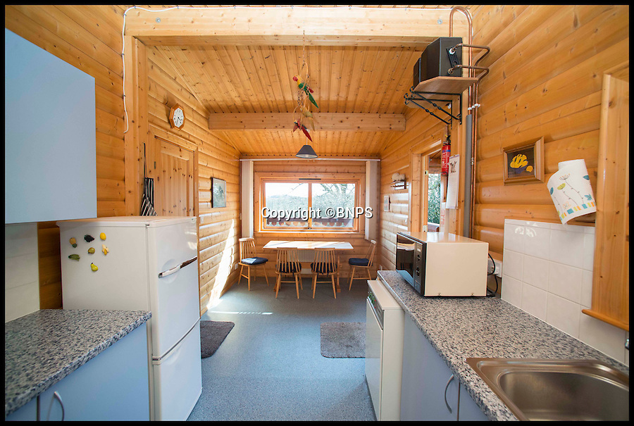 BNPS.co.uk (01202 558833)<br /> Pic: LauraDale/BNPS<br /> <br /> The kitchen and dining area.<br /> <br /> A dream home...at a price - chance to buy your very own log cabin in a wood.<br /> <br /> A rare opportunity has arisen to own this idyllic log cabin nestled in the heart of ancient forest - but prospective buyers will have to dig deep because it comes with a whopping £350,000 price tag.<br /> <br /> The quaint wooden retreat is down a private track in the the New Forest, the medieval hunting grounds of William the Conqueror, offering peace and quiet for those looking to escape the stresses of modern life.<br /> <br /> The woodland bolthole might look like a holiday home but unlike its counterparts it comes with permission to live in it all year round.<br /> <br /> But its ideal location on the edge of a tiny hamlet in the west of New Forest National Park means it is worth more than twice what a similar holiday cabin at a home park would be worth.