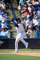 New York Yankees second baseman Gleyber Torres (25) at bat during a Grapefruit League Spring Training game against the Toronto Blue Jays on February 25, 2019 at George M. Steinbrenner Field in Tampa, Florida.  Yankees defeated the Blue Jays 3-0.  (Mike Janes/Four Seam Images)