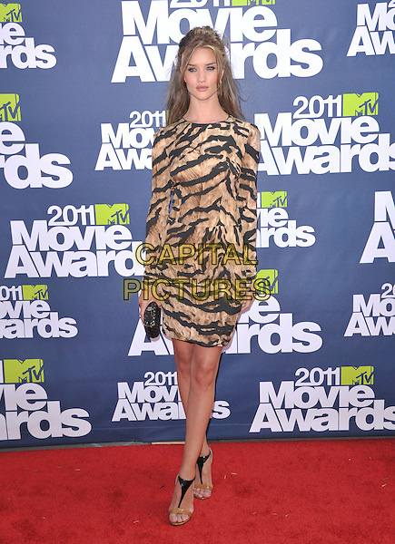 Rosie Huntington-Whiteley.at 2011 MTV Movie Awards held at Gibson Ampitheatre in Universal City, California, USA, June 5th, 2011..Arrivals full length brown tiger animal print dress long sleeve open toe t-bar sandals two tone beige clutch bag .CAP/RKE/DVS.©DVS/RockinExposures/Capital Pictures.