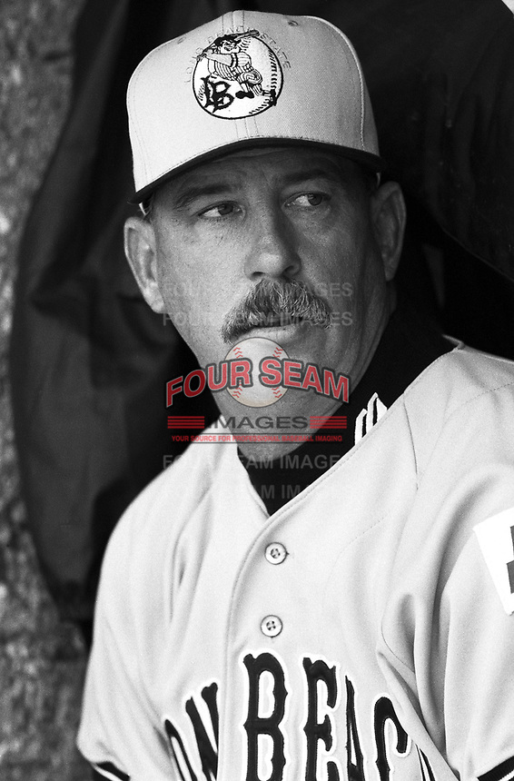 Long Beach State Head Coach Dave Snow at Goodwin Field in Fullerton,California during the 1996 season. (Larry Goren/Four Seam Images)