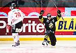 20150104 AIK - Vita Hästen