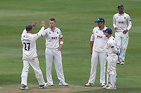 Peter Siddle of Essex celebrates with his team mates after taking the wicket of Keshav Maharaj during Essex CCC vs Yorkshire CCC, Specsavers County Championship Division 1 Cricket at The Cloudfm County Ground on 9th July 2019
