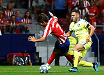 Atletico de Madrid's Joao Felix during La Liga match. Aug 18, 2019. (ALTERPHOTOS/Manu R.B.)Atletico de Madrid's Joao Felix  during the Spanish La Liga match between Atletico de Madrid and Getafe CF at Wanda Metropolitano Stadium in Madrid, Spain