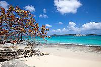 Honeymoon Beach<br /> Virgin Islands National Park<br /> St John, VI 00831