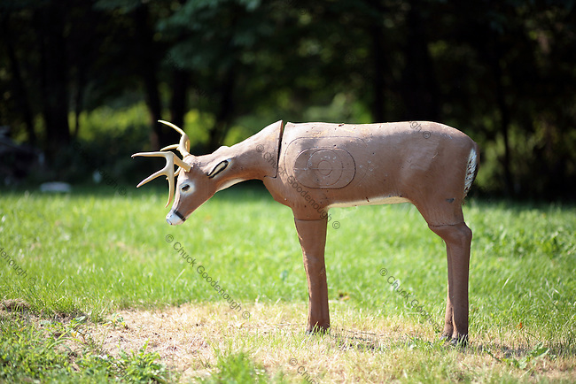 Stock Photo of a Bow Hunting Target Practice Deer Decoy