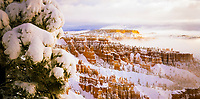 USA, Utah, Bryce Canyon National Park, A winter storm blankets the incredible hoodoo formations in fresh snow