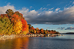 Bright autumn foliage along the shore of Quabbin Reservoir at Morton Pond site near Goodnough dike.