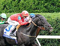 10-07-17 Shadwell Turf Mile Stakes Keeneland