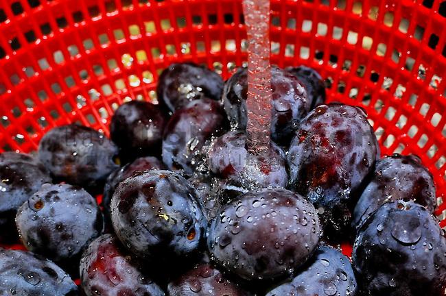Washing fruits, water, Wasser, Früchte waschen