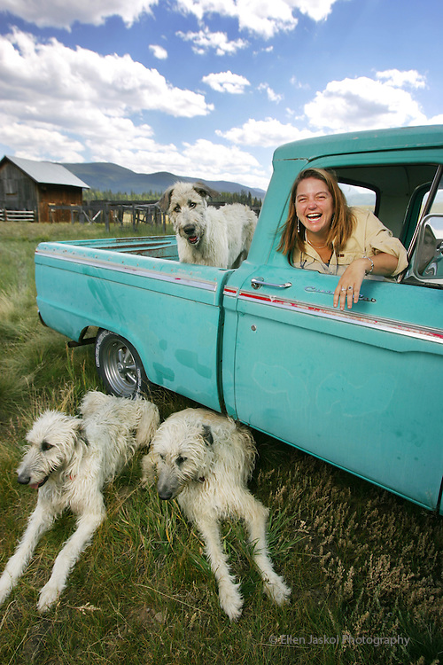 "Writer Pam Houston's three Irish Wolfhounds and her 1964 Ford pickup at her ranch in Creede, Co. on Friday Sept. 14, 2007.   She's written four books, including ""Cowboys are my Weekness,"" and teaches creative writing.  Liam is in the back of the truck and Fenton, left, and Mary Ellen, are on the ground. (ELLEN JASKOL/ROCKY MOUNTAIN NEWS)"