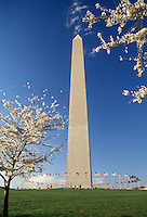 AJ2576, Washington Monument, Washington, DC, District of Columbia, capital city, Washington Monument in the spring in Washington, D.C.