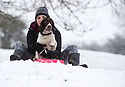 21/01/18<br /> <br /> Chloé Kirkpatrick (25) with springer spaniel, Chester, on a sledge near Dovedale in the Derbyshire Peak District..<br /> <br /> All Rights Reserved: F Stop Press Ltd. +44(0)1773 550665  www.fstoppress.com.