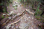 May 2012 - Stone structures (walls) along the Mt Tecumseh Trail in Waterville Valley. Trail stewardship groups suggest only needed stone structures that benefit the trail should be built along a trail. And the best maintained trails have stonework that looks natural and blends in with the surroundings. Proper parties have since removed these walls.