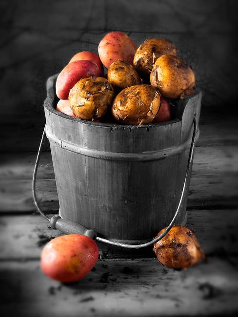 Maris Piper potatoes photos, pictures & images