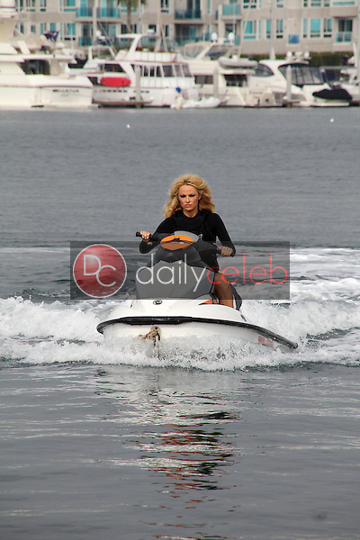 Pamela Anderson<br />