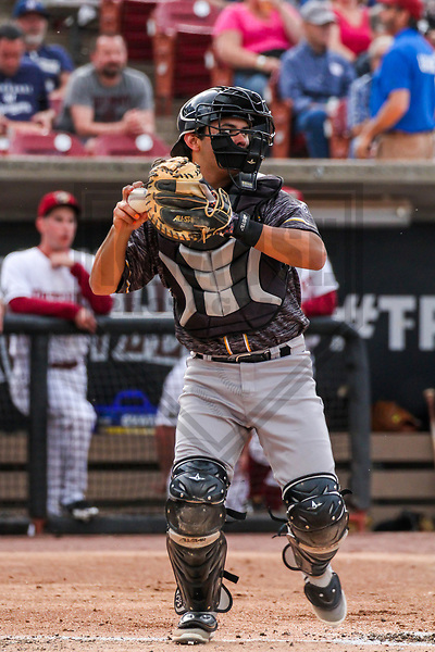 Quad Cities River Bandits catcher Raymond Henderson (9) during a Midwest League game against the Wisconsin Timber Rattlers on June 8, 2017 at Fox Cities Stadium in Appleton, Wisconsin.  Wisconsin defeated Quad Cities 8-3. (Brad Krause/Krause Sports Photography)