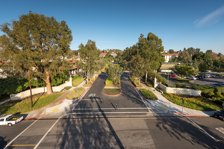 Occidental College's Mullin Entrance and Grove is the main entrance to campus, located at Campus Road and Alumni Avenue.<br /> (Photo by Marc Campos, Occidental College Photographer)